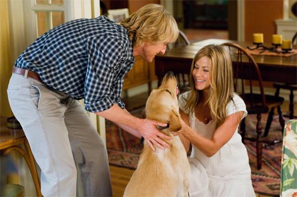 Dogilike.com :: จัดอันดับหนัง 5 เรื่องเกี่ยวกับน้องหมา ที่สร้างมาจากเรื่องจริง