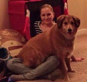 Dogilike.com :: 4 เหตุผล ที่จะทำให้คุณเข้าใจว่าทำไมน้องหมาจึงชอบนั่งตักเจ้าของ