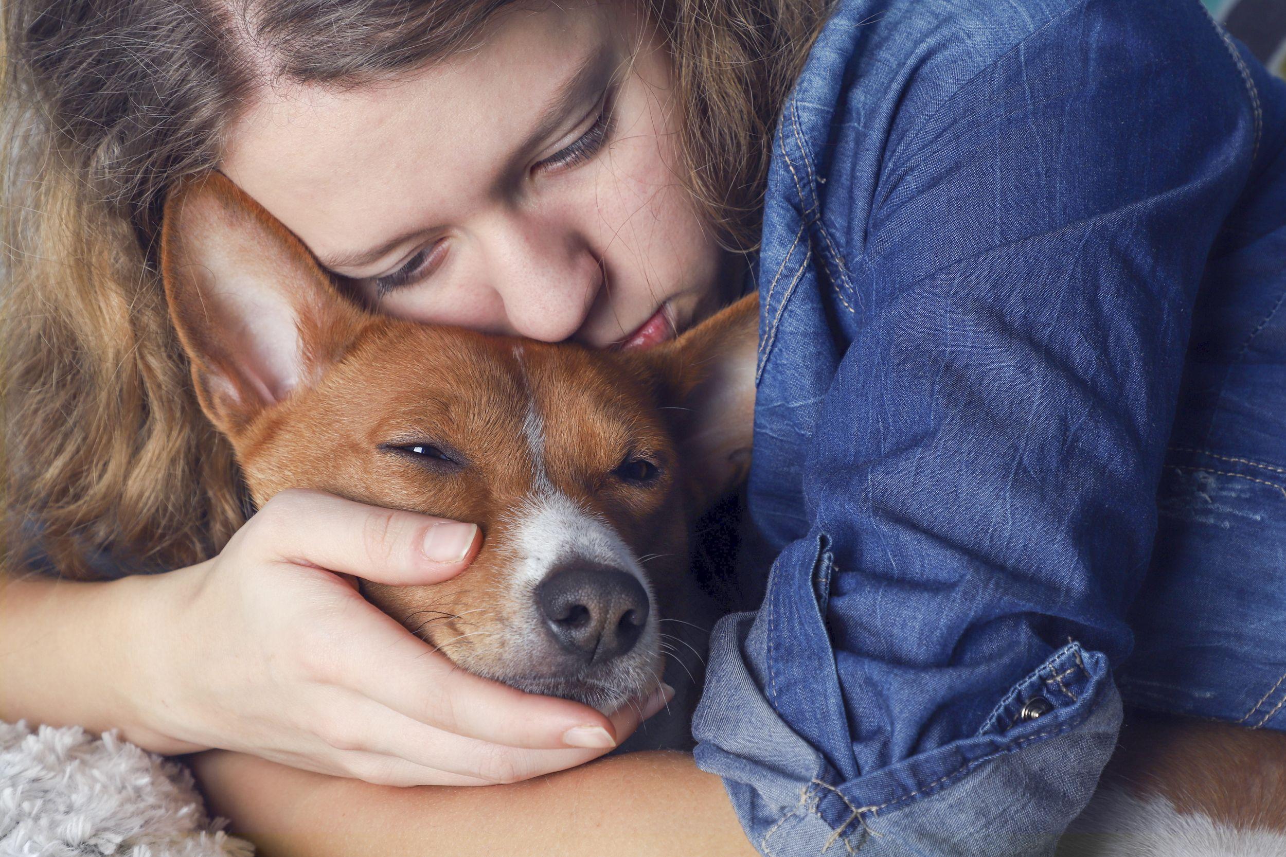 Dogilike.com :: วิธีข้ามผ่านความเศร้า ... เมื่อน้องหมาจากเราไปตลอดกาล