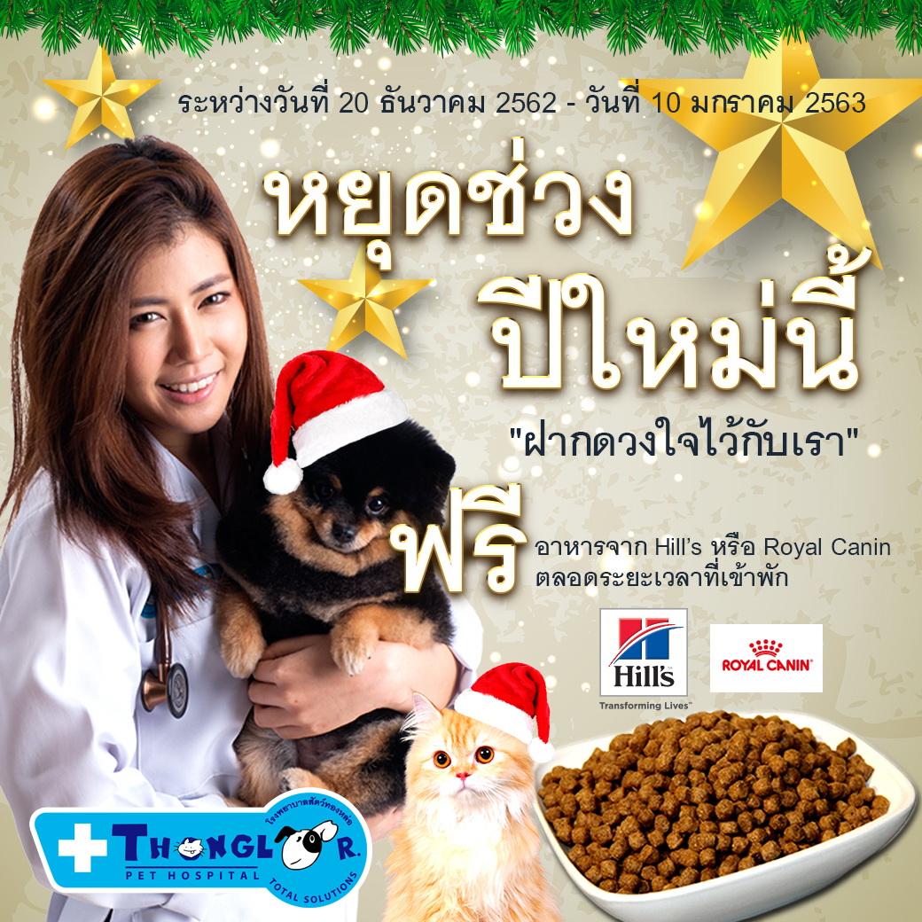 Dogilike.com :: รพส.ทองหล่อ เปิดบริการรับฝากน้องหมา-น้องแมว ช่วงปีใหม่