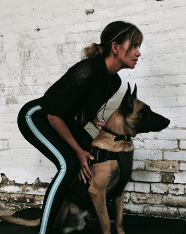 Dogilike.com :: ฮัลลี เบอร์รี่ ควงสองสุนัขนักฆ่าอวดโฉมบนโลกของ John Wick:Chapter 3