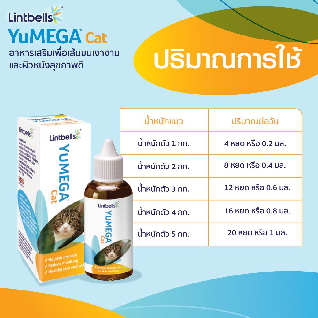 Dogilike.com :: บอกลาปัญหาผิวหนังและเส้นขนน้องแมวด้วย YuMEGA Cat Essential Omega Oils