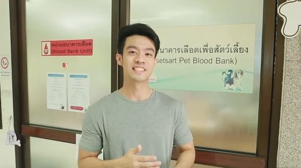 Dogilike.com :: สัตวแพทย์หล่อบอกต่อด้วย กับภารกิจตามหาน้องหมาไปบริจาคเลือด จะสำเร็จหรือไม่มาดู !!