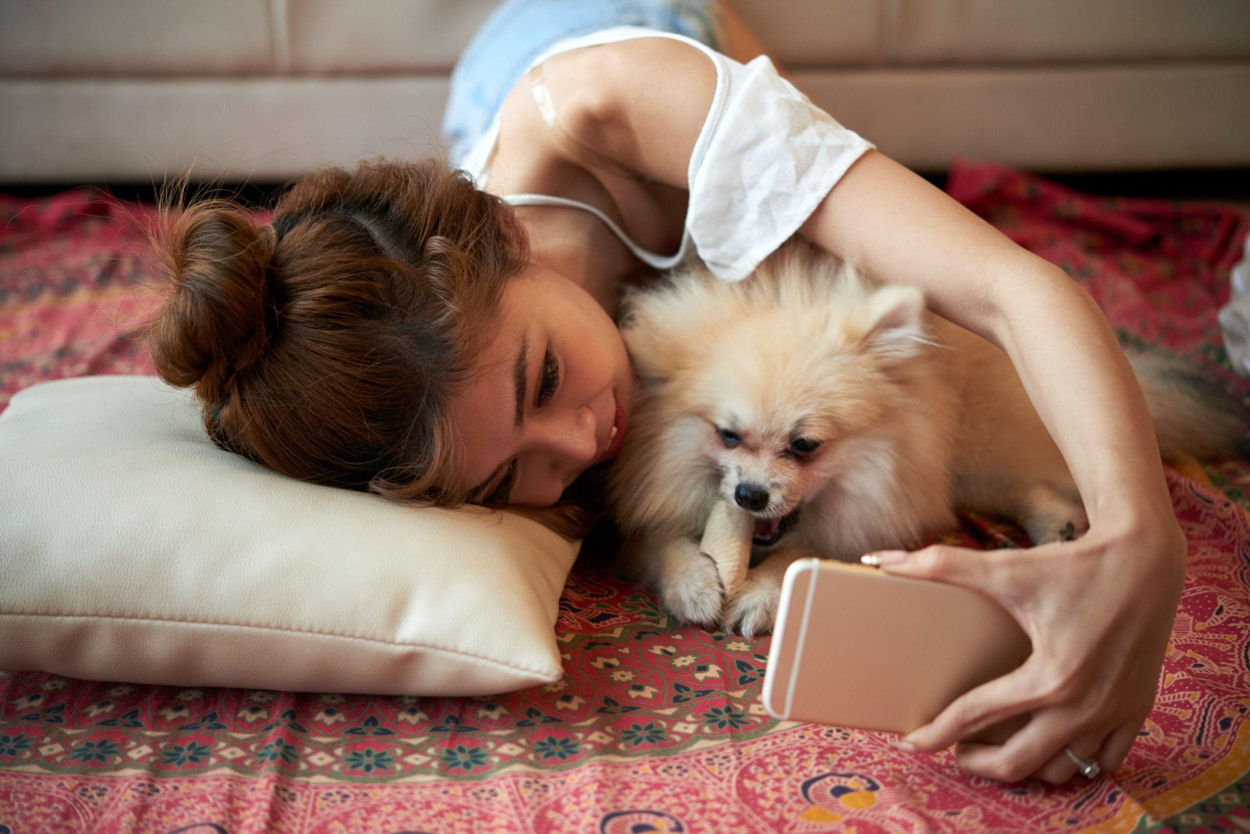 Dogilike.com :: เชื่อป่ะ โพสต์รูปหมาลงโซเชียลโอกาสได้คู่กว่าโพสต์รูปเซ็กซี่ของตัวเอง
