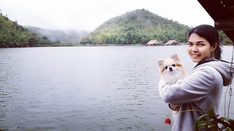 Dogilike.com :: อวดภาพน้องหมาสายเที่ยว ปีใหม่ไปไหนมาบ้าง