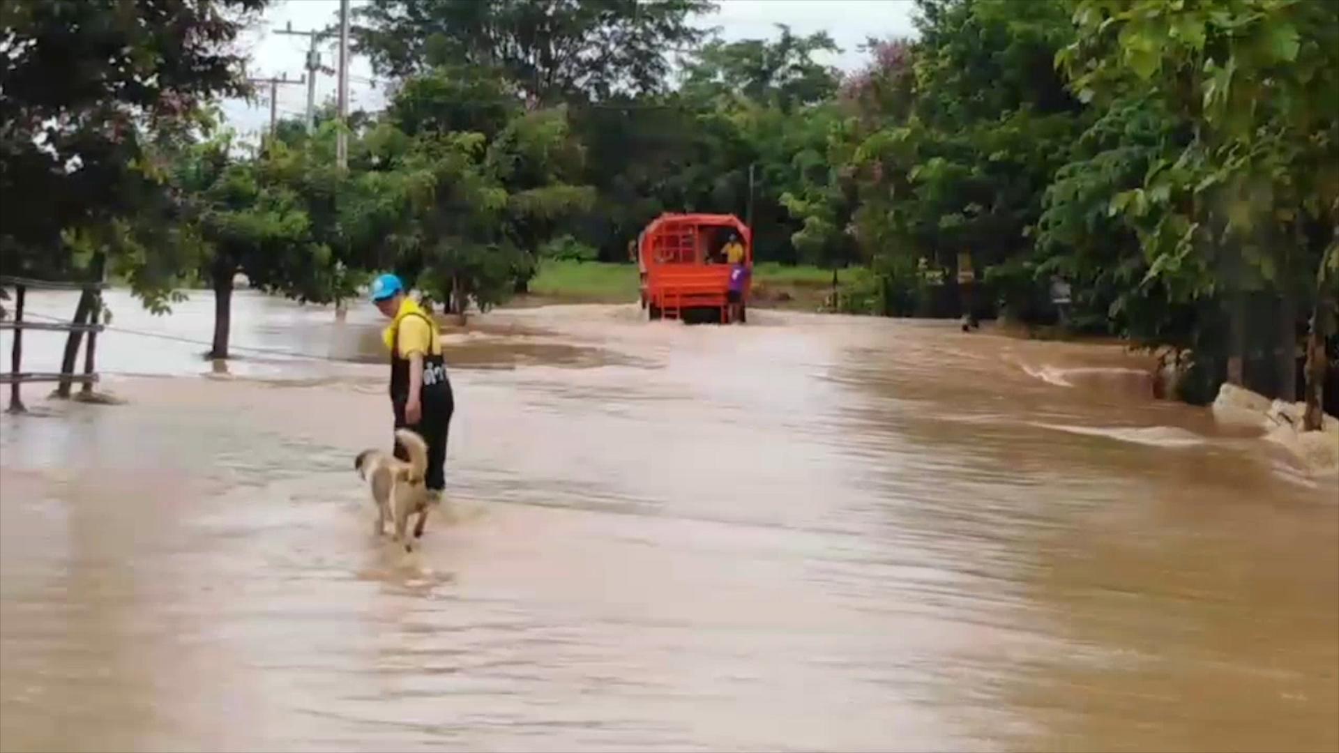 Dogilike.com :: ประทับใจ! จิตอาสา อุ้มน้องหมาฝ่ากระแสน้ำเชี่ยวที่พิษณุโลก
