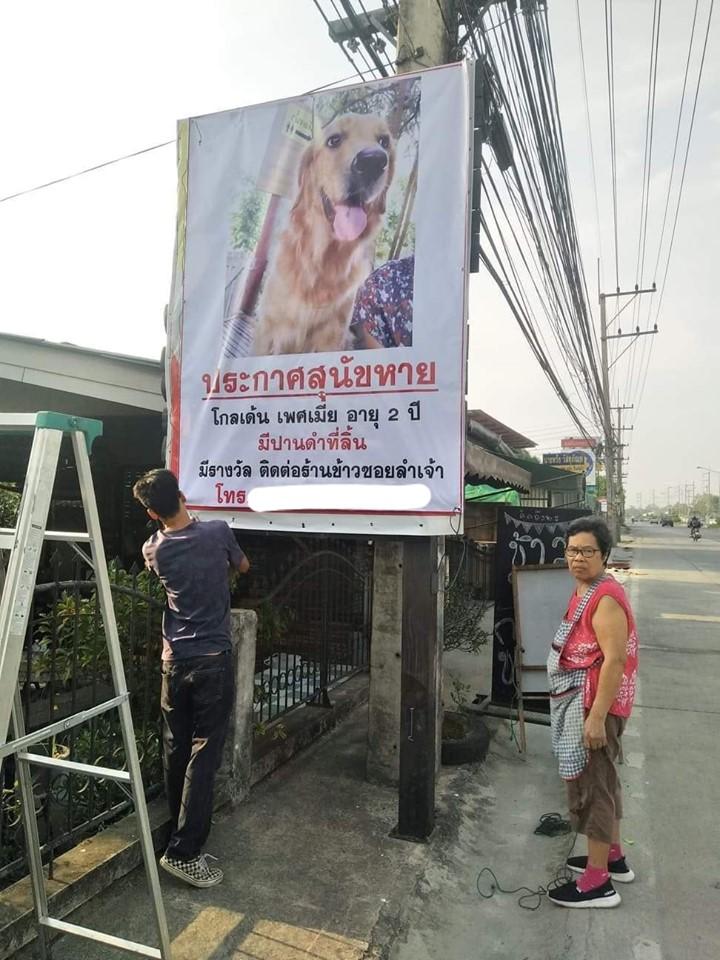 Dogilike.com :: สุดฮา ... หมาหายเจ้าของสั่งทำป้าย ค่าป้ายยังไม่ทันจ่าย เจอหมาซะแล้ว!!!