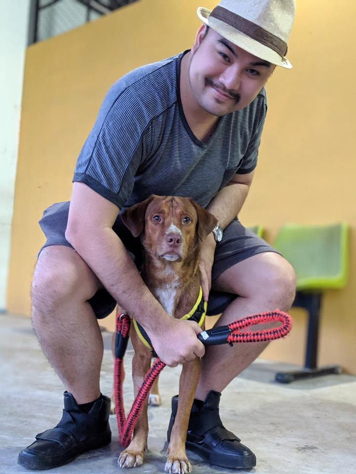 Dogilike.com :: อัปเดตชีวิตดี๊ดีของบุญรอด น้องหมาที่เคยลอยคอกลางอ่าวไทย