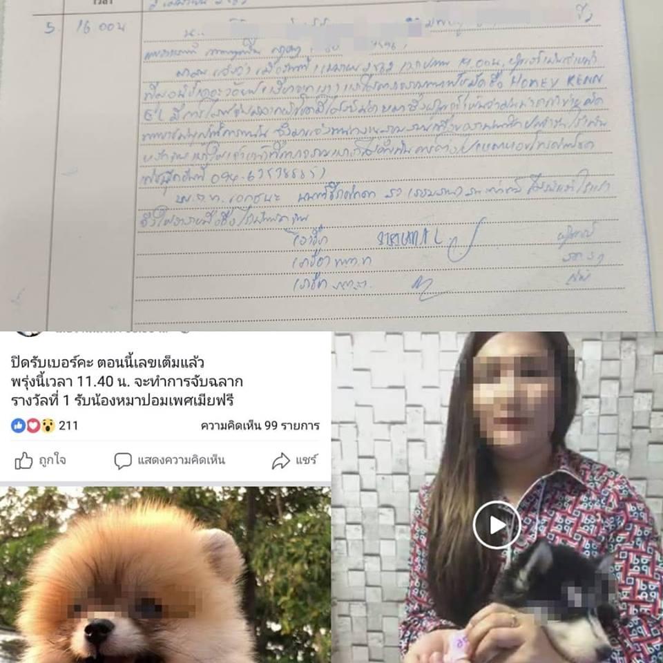 Dogilike.com :: เพจดังแฉฟาร์มขายน้องหมาไร้จิตสำนึก  ขายเบอร์ ไลฟ์สดแจกหมา!!