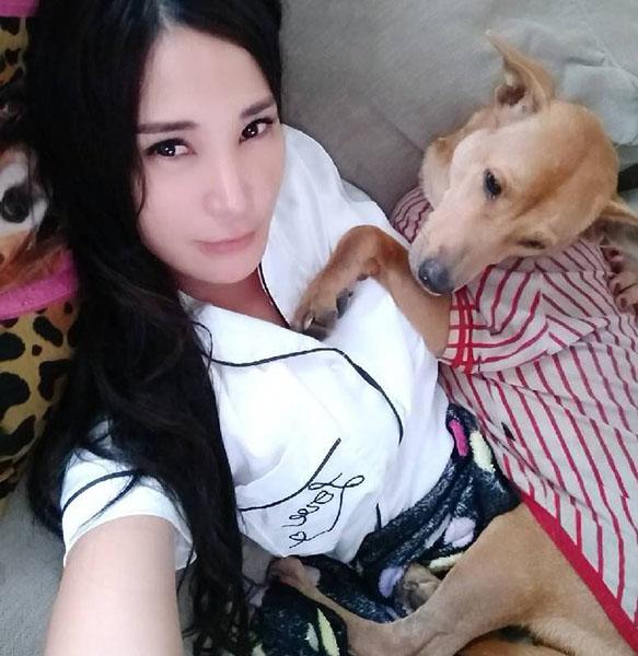 Dogilike.com :: ดาราสาวใจสลาย หมาที่เก็บมาเลี้ยงหาย สุดท้ายพบถูกจับไปทำพะโล้!!!