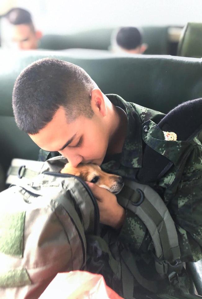 Dogilike.com :: อบอุ่นใจ ... พลทหารใจดี รับเลี้ยงลูกหมาที่เก็บได้จากกองพัน