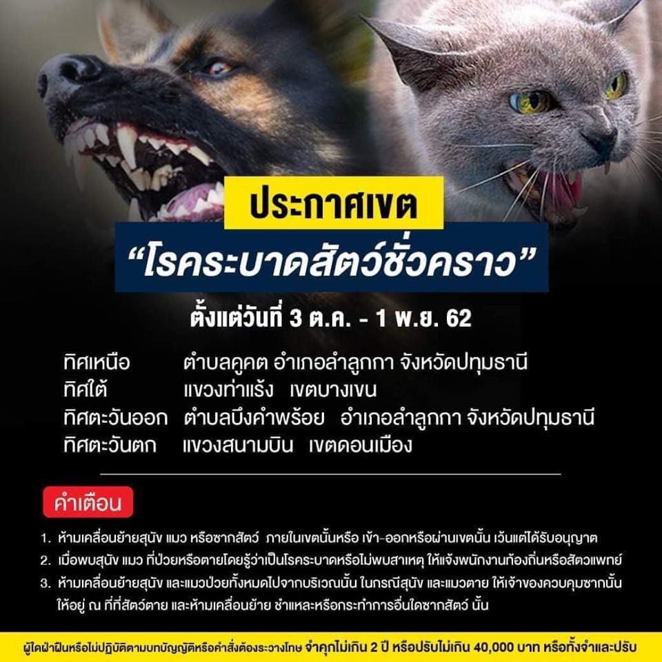 Dogilike.com :: ประกาศเขต โรคระบาดสัตว์ชั่วคราว 3 ต.ค. - 1 พ.ย. 62