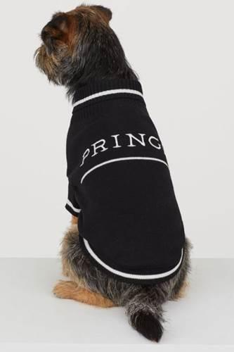 Dogilike.com :: สายแฟชั่นต้องมี! H&M เปิดตัวเสื้อผ้าใส่คู่สำหรับเจ้าของและน้องหมา