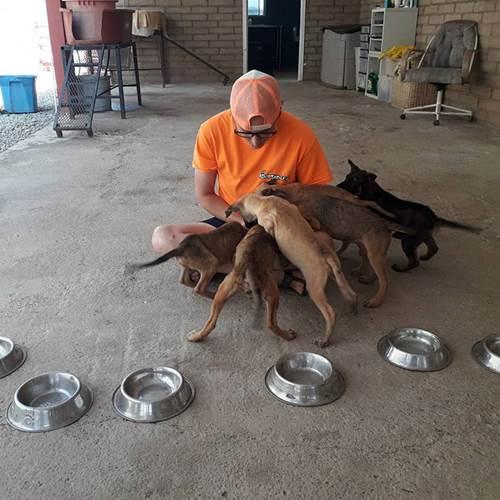Dogilike.com :: จนท.ศูนย์พักพิงฯ ขอรับบริจาคอาหารสุนัขในวันเกิด และนี่คือสิ่งที่เธอได้รับ!
