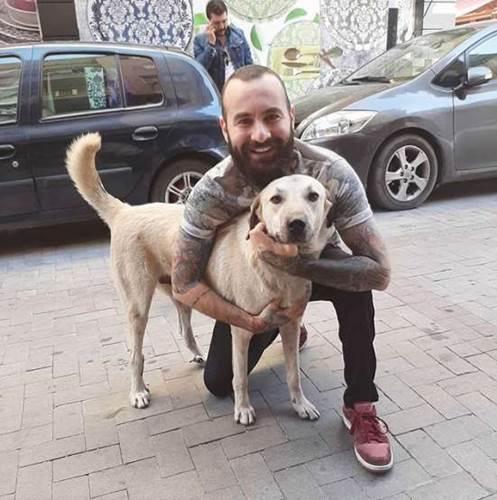Dogilike.com :: วงจรปิดเผย หนุ่มตุรกีทำแบบนี้เมื่อเจอตูบจรจัด ชาวเน็ตยิ้มแก้มปริ