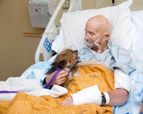 Dogilike.com :: น้ำตาซึม! คุณปู่ทหารผ่านศึกขอเจอหน้าสุนัขสุดรักเป็นครั้งสุดท้าย