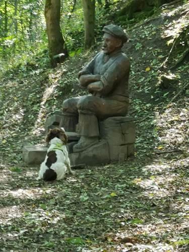 Dogilike.com :: เอ็นดู! เจ้าของเผยคลิปน่ารัก ตูบนั่งสงสัยทำไมรูปปั้นไม่ยอมเล่นโยนไม้ด้วย