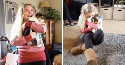 Dogilike.com :: เจ้าสาวป้ายแดงลมแทบจับ ได้รับของขวัญแต่งงานเป็นลูกสุนัข!