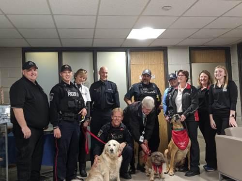 Dogilike.com :: อังกฤษให้แก๊งสุนัขบำบัดมาช่วยลดความเครียดให้เจ้าหน้าที่ตำรวจ!
