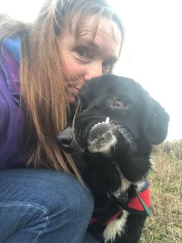 Dogilike.com :: หนูอยากมีบ้าน! ตูบเกิดมาหน้าตาบิดเบี้ยว ตามหาเจ้าของที่รักด้วยหัวใจ