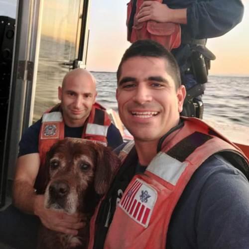 Dogilike.com :: รอดหวิด! ยามชายฝั่งสหรัฐฯ เจอหมาลอยคอในน้ำช่วยชีวิตได้ทัน