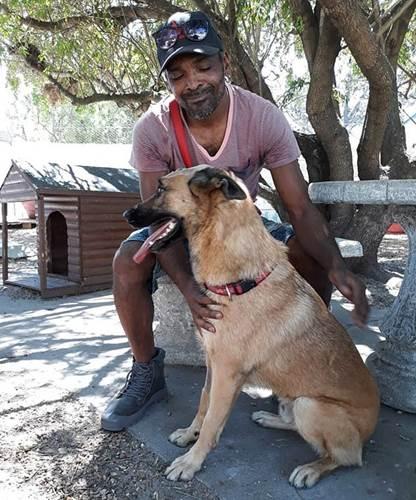 Dogilike.com :: สุดยอดเจ้าตูบ! ปกป้องเจ้าของ กระโดดรับมีดแทนจนได้รับบาดเจ็บ