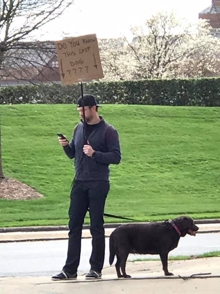 Dogilike.com :: หนุ่มยืนถือป้ายตามหาเจ้าของสุนัข หลังพบเดินหลงทางข้างถนน!
