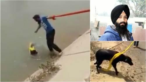 Dogilike.com :: นับถือใจ! หนุ่มชาวซิกข์ยอมถอดผ้าโพกหัวช่วยชีวิตสุนัขตกน้ำ