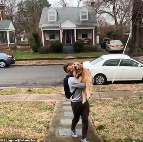 Dogilike.com :: น่ารักสุดๆ! ตูบกระโดดตัวลอยดีใจเห็นเจ้าของกลับบ้าน (คลิป)