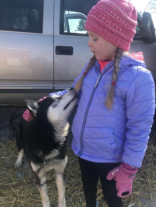 Dogilike.com :: เด็ก 7 ปีป่วยหนัก ขอจดหมายกำลังใจจากตูบและนี่คือสิ่งที่เกิดขึ้น !
