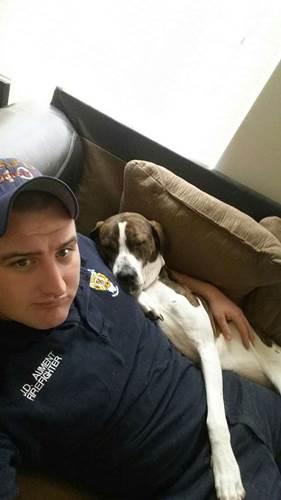 Dogilike.com :: ทหารหนุ่มห่างตูบสุดรัก 9 เดือน ส่งเสื้อให้เป็นของขวัญและนี่คือสิ่งที่เกิดขึ้น!