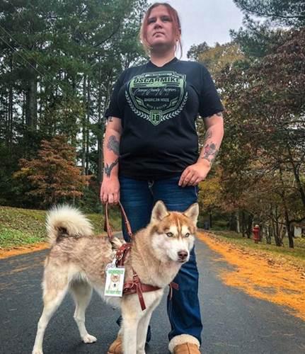 Dogilike.com :: ฮัสกี้ฯแสนรู้ พาเจ้าของเดินเข้าป่าไปเจอกล่อง เปิดดูพบลูกแมว 7 ตัว!
