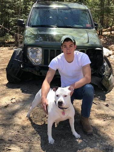 Dogilike.com :: หนุ่มเล่านาทีตูบของครอบครัว ช่วยชีวิตจากอุบัติเหตุรถไถลชนต้นไม้ !