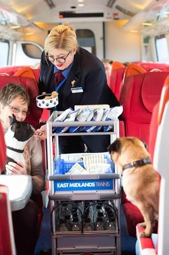 Dogilike.com :: เจ๋ง! รถไฟอังกฤษเตรียมแผนให้เจ้าของและสุนัขเดินทางได้ง่ายขึ้น