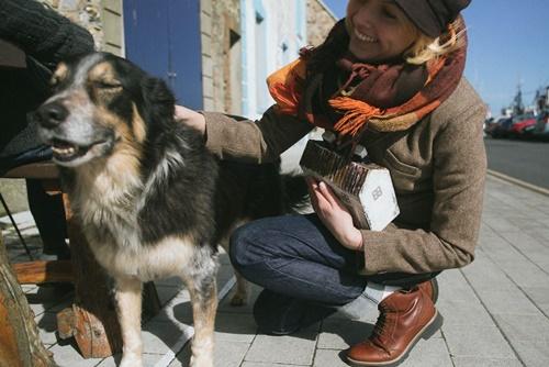 Dogilike.com :: สาวทำบ้านไอริชหลังจิ๋ว ระดมทุนช่วยหมาจรฯ ที่ประเทศลิทัวเนีย!