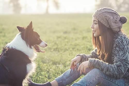 Dogilike.com :: เผยวิจัยล่าสุด! คนเครียด หมาเครียดด้วย พบระดับฮอร์โมนปรับตัวตามกัน