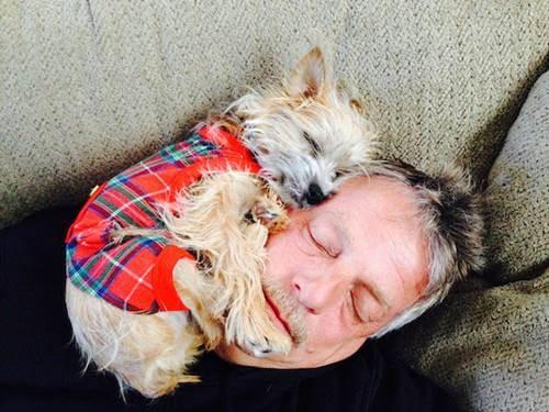 Dogilike.com :: 20 คุณพ่อที่บอกว่า ไม่อยากเลี้ยงตูบ แต่สุดท้ายกลายเป็นแบบนี้ !