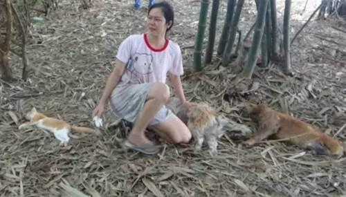 Dogilike.com :: เจ้าของเศร้า! มือดีวางยาเบื่อหมาพิการ 2 ตัวกับแมว 1 ตัวตายคาทุ่งนา