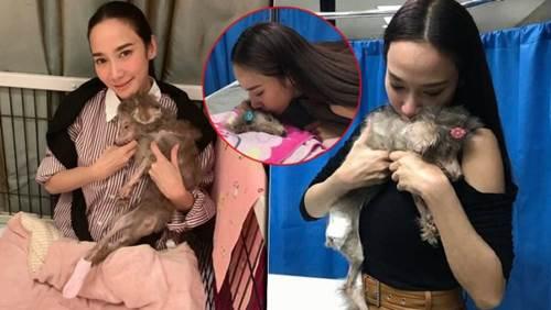 Dogilike.com :: อั้ม หลั่งน้ำตา หลังสูญเสียน้องหมาสุดรักที่อยู่ด้วยกันมาร่วม 20 ปี