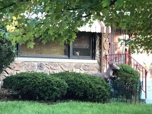 Dogilike.com :: ซึ้ง! ตูบตัวนี้เฝ้ามองเจ้าของผ่านหน้าต่าง รอกลับบ้านทุกวันนาน 11 ปี