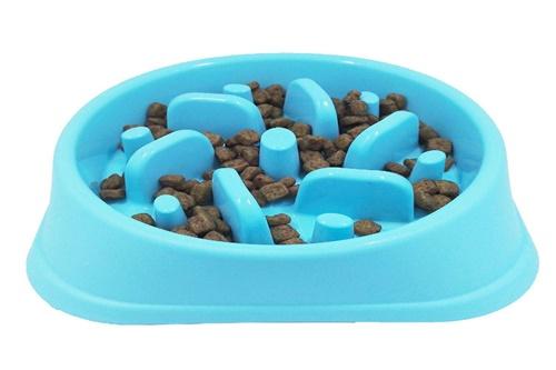 Dogilike.com :: เปิดคลัง! ชามอาหารสำหรับน้องหมามีกี่แบบกันแน่นะ
