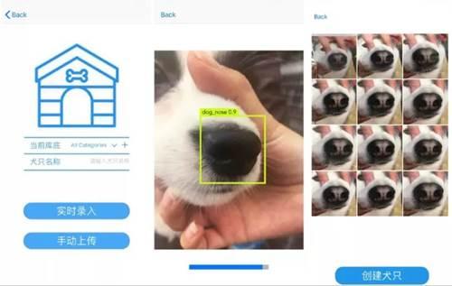 Dogilike.com :: เจ๋ง! จีนพัฒนาระบบ AI ตามหาสุนัขหายด้วยวิธีสแกนจมูก
