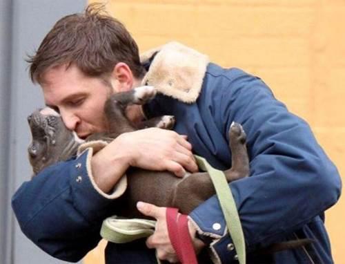 Dogilike.com :: ผลสำรวจล่าสุดเผย เจ้าของชอบจูบสุนัข มากกว่าคู่รักของตัวเอง !