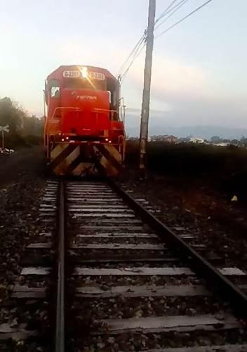 Dogilike.com :: นาทีชีวิต! คนขับหยุดรถไฟกะทันหัน ช่วยชีวิตตูบถูกล่ามโซ่ทิ้งไว้บนราง (คลิป)
