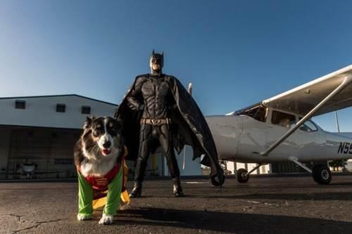 Dogilike.com :: เจ๋ง! หนุ่มนักบินแต่งแบทแมน ช่วยหาบ้านใหม่ให้ตูบทั่วอเมริกา