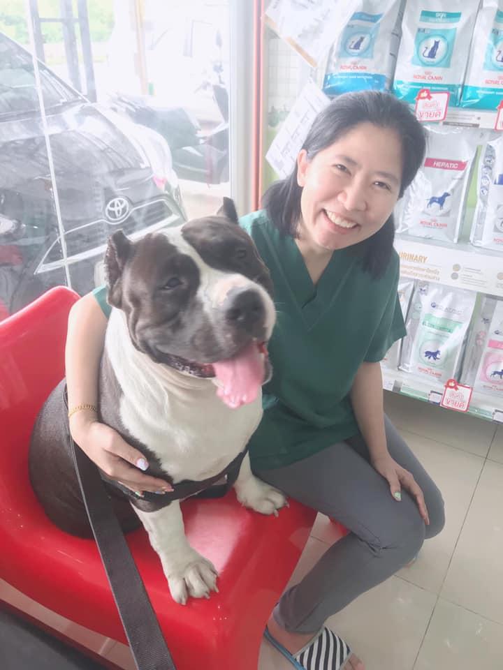 Dogilike.com :: เลี้ยงหมาต้องระวัง! เผยสภาพเป็ดยาง 32 ตัวหลังออกจากท้อง #พี่เดเวล