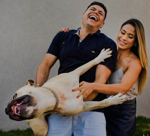 Dogilike.com :: คู่รักพาตูบถ่ายภาพพรีเวดดิ้งด้วยกัน สุดท้ายออกมาเป็นแบบนี้ !