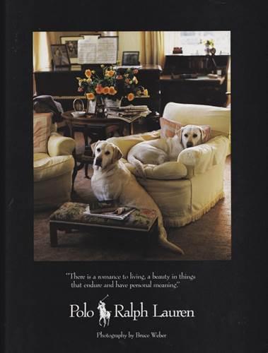 Dogilike.com :: จัดอันดับ 5 สายพันธุ์น้องหมาที่มักจะเห็นในงานโฆษณากันบ่อยๆ !