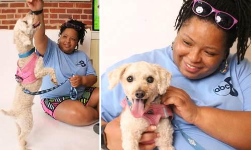 Dogilike.com :: เจ้าตูบขนสังกะตังอาศัยอยู่ใต้เตียงนาน 2 ปี วันนี้มันได้รับการดูแลแล้ว !