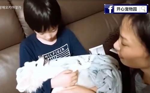 Dogilike.com :: บีบหัวใจ! เด็กชายร่ำไห้อุ้มตูบที่กำลังจะตาย ขณะคุณแม่ร้องเพลงกล่อม (คลิป)